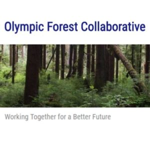 Olympic Forest Collaborative