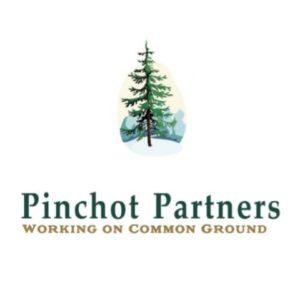 Pinchot Partners